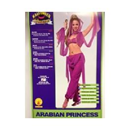 Arabian Girl Princess Jasmine Costume  sc 1 th 225 & Arabian Girl Princess Jasmine Or Harem Dancer Costume