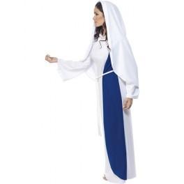 Biblical Mary Costume